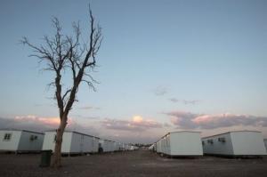 Menetekel über dem Lager. Ein toter Baum ...Foto: NWRI